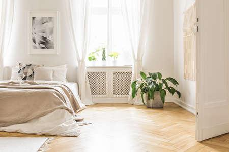 Plant in de buurt van bed met deken in wit slaapkamerinterieur met poster naast raam. Echte foto Stockfoto