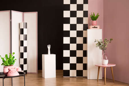 Plant on table in studio interior with checkerboard wall and pink phone on a stool