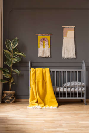 Yellow blanket on babys bed in grey bedroom interior with ficus and decor on the wall. Real photo