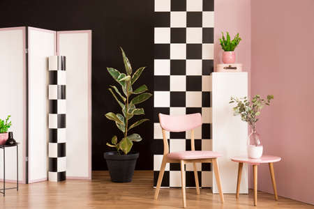 Pink wooden chair against checkerboard wall in modern interior with ficus next to screen
