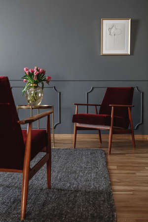 Two red armchairs standing in a dark gray living room interior with pink tulips on a metal table and a drawing on the wall. Real photo