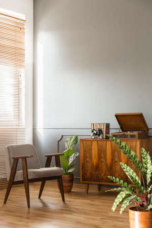 Grey armchair next to wooden cabinet in simple living room interior with plant. Real photo with a place for your lamp Stock Photo