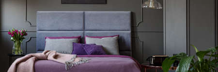Double bed with soft bedhead, purple bedclothes and grey pillows standing in dark bedroom interior with molding on the wall