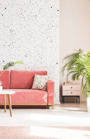 Plant next to pink couch with pillow in living room interior with patterned wallpaper. Real photo