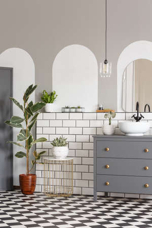 Grey cabinet and ficus in modern bathroom interior with mirror and checkerboard floor. Real photo Stock Photo