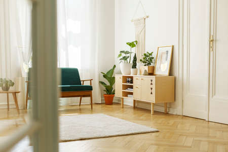 Plants on wooden cupboard with poster in white loft interior with door and green armchair. Real photo