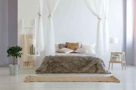 Pianta accanto al letto a baldacchino marrone nell'interno della camera da letto minima con moquette e lampada. Foto reale