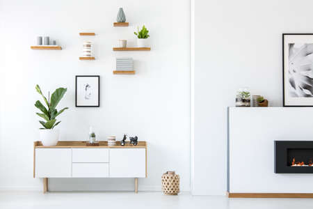 Pflanzen Sie auf weißem Holzschrank im Innenraum der Wohnung mit Plakaten und Kamin. Echtes Foto