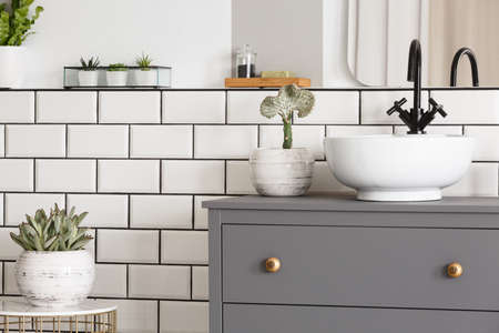 Plant on table next to grey cabinet with washbasin in simple modern bathroom interior. Real photo Stock Photo