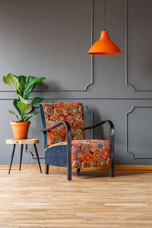 Plant on table next to patterned armchair under orange lamp in grey flat interior. Real photo Stock Photo