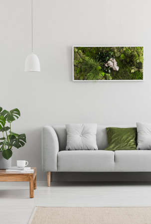 Framed, green moss garden on a white wall in a trendy living room interior with an elegant, gray sofa and a wooden table. Real photo.