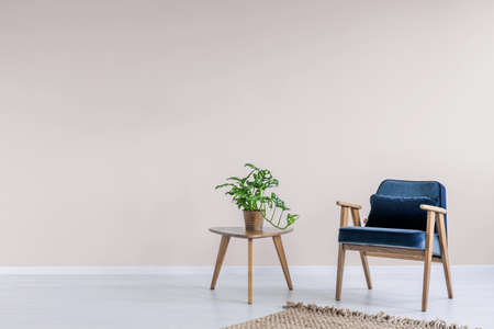 Navy blue armchair with wooden frame in a trendy living room interior with an empty pink wall and copy space for a bookcase. Real photo.