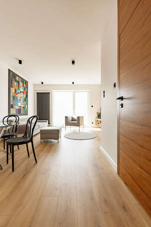 View from a corridor on a living room interior with a sofa, armchair, painting and chairs as well as the entrance door