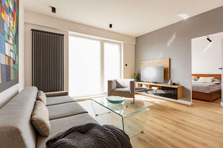 Side view of a modern living room interior with a sofa, armchair, glass table, tv and door to bedroom