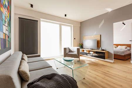 Vue latérale d'un intérieur de salon moderne avec un canapé, un fauteuil, une table en verre, une télévision et une porte de chambre