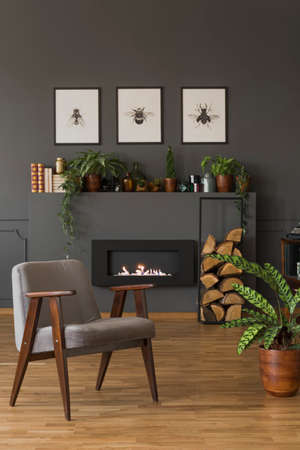 Grey wooden armchair next to plant in apartment interior with posters above fireplace. Real photo