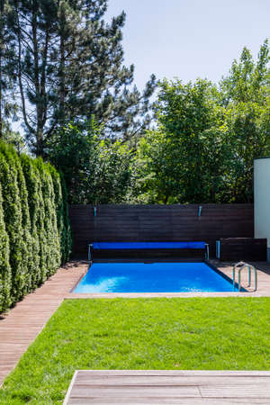 Swimming pool and green grass on the terrace with trees during summer. Real photo