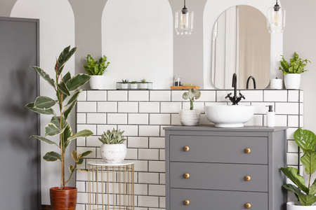Mirror above grey cabinet with washbasin in bright bathroom interior with plants. Real photo
