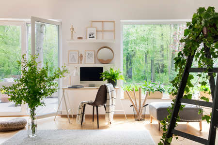 Blanket on chair next to desk in bright living room interior with windows and plants. Real photo