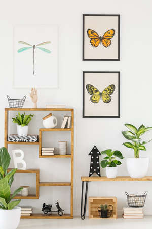 Butterfly and dragonfly posters on a white wall and wooden shelves with cute plants and decorations in a natural interior for a biologist Stock fotó