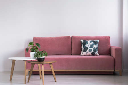 Pink sofa with a patterned pillow and two coffee tables with plants on a white wall in a living room interior. Real photo Stock Photo