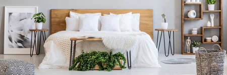 Wooden box with fresh green plants placed under hairpin bench in real photo of double bed, wooden rack and poster in grey bedroom interior