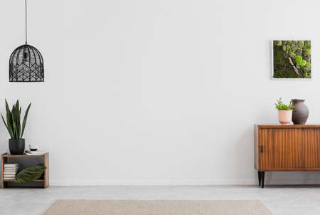 Lamp and poster in white empty living room interior with plants and wooden cabinet. Real photo. Place for your furniture