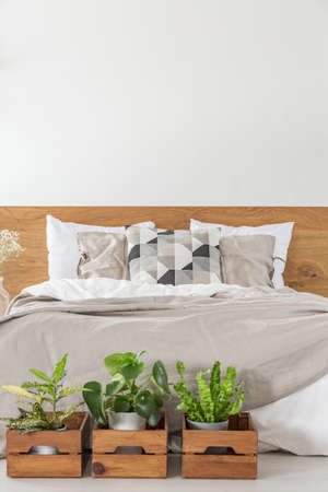 Close-up of a bed with sheets and pillows with boxes and plants in front in a bedroom interior. Empty wall above the bed. Place your poster here