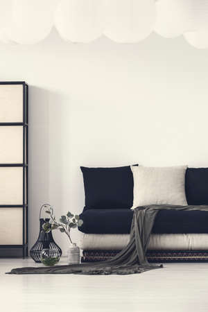 Blanket and pillows on black couch in white modern living room interior with plant. Real photo