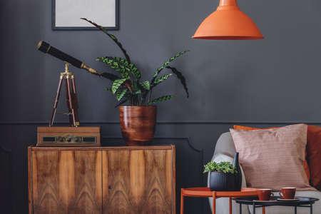 Pflanzen und Teleskop auf Holzschrank in Retro grau Wohnzimmer Interieur mit orange Lampe Standard-Bild