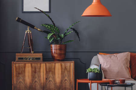 Plant and telescope on wooden cupboard in retro grey living room interior with orange lamp