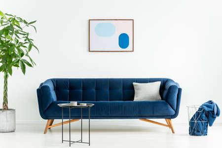 Palm junto al sofá azul con almohada en el interior de la sala de estar blanca con cartel y mesa negra. Foto real Foto de archivo