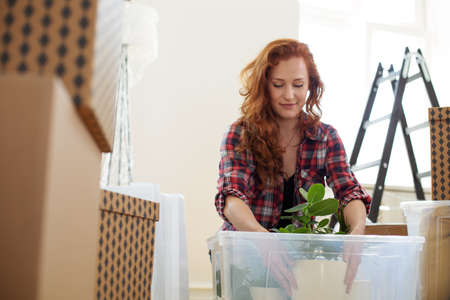 Low angle on smiling woman packing a plant into a box during relocation to a new flat 스톡 콘텐츠 - 106800917