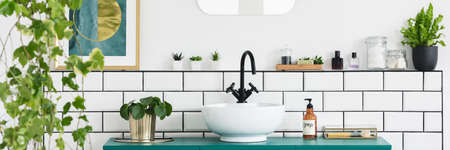 Green cabinet with fresh plant, bottle with soap and white sink with black tap in real photo of bright bathroom interior Stockfoto