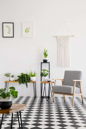 Real photo of a retro armchair standing on black and white checked floor in bright living room interior with plants Foto de archivo