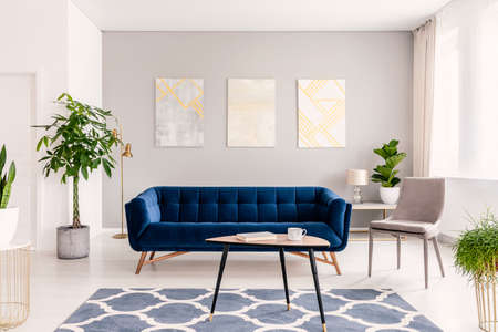 Real photo of plants, dark blue sofa and posters on the wall in a modern living room interior