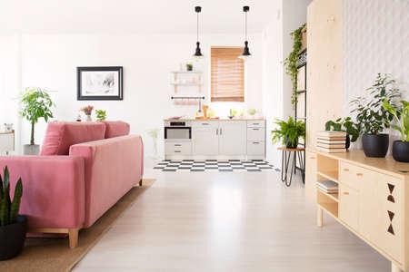 Foto reale dell'interno luminoso del soggiorno con molte piante fresche, armadio in legno con libri, salotto rosa e angolo cottura