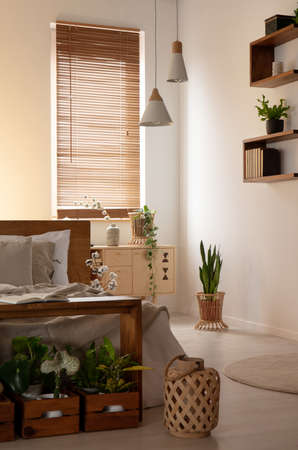 Lantern and plants in dark bedroom interior with bed next to lamps and blinds on window. Real photo