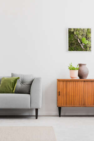 Real photo of bright room interior with framed moss, retro cupboard with plant and vase and grey couch with green pillow Stock fotó