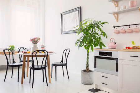 Black chairs at table with flowers in white dining room interior with plant and kitchenette. Real photo Standard-Bild - 107096345