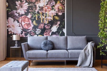 Cushion and blanket on a stylish sofa in a gray living room interior with ivy plant and flowers print on the wall Imagens