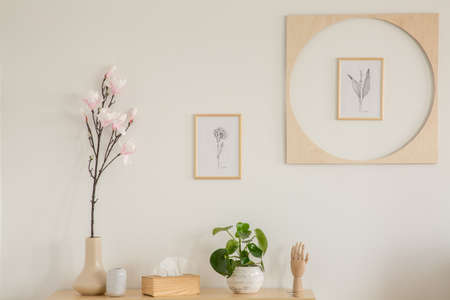 Plants on wooden cabinet in white living room interior with posters on the wall. Real photo