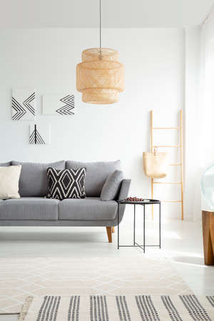 Grey settee with cushions in white spacious living room interior with lamp and posters. Real photo 写真素材