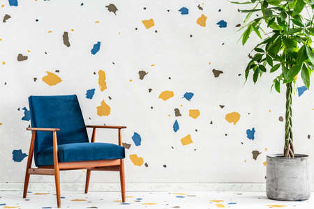 Blue wooden armchair and plant in modern living room interior with colorful wallpaper. Real photo