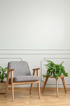Grey wooden armchair next to table with plant in living room interior with copy space. Real photo