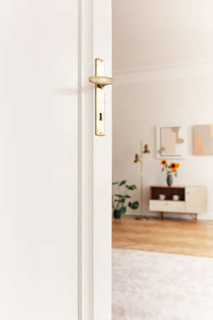 White door and sunflowers on cupboard in the blurred background of bright living room interior. Real photo