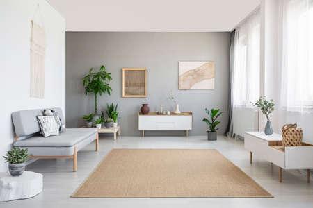 Brauner Teppich zwischen weißem Schrank und Sofa im grauen Wohnzimmerinnenraum mit Plakaten. Echtes Foto