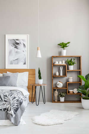 Plants on shelves next to wooden bed in grey bedroom interior with poster and fur. Real photo Archivio Fotografico - 107307758