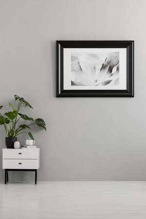 Plant on white cabinet in empty grey apartment interior with poster. Real photo. Place for your sofa