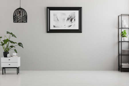 Poster on grey wall in empty living room interior with lamp above plant on cabinet. Real photo. Place for your sofa